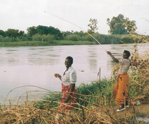 malawi_shire_river_fishing