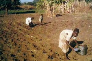malawi_simple_irrigation